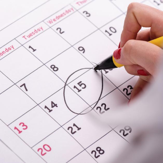schedule-consultation