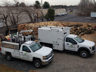 Bucks county firewood delivery